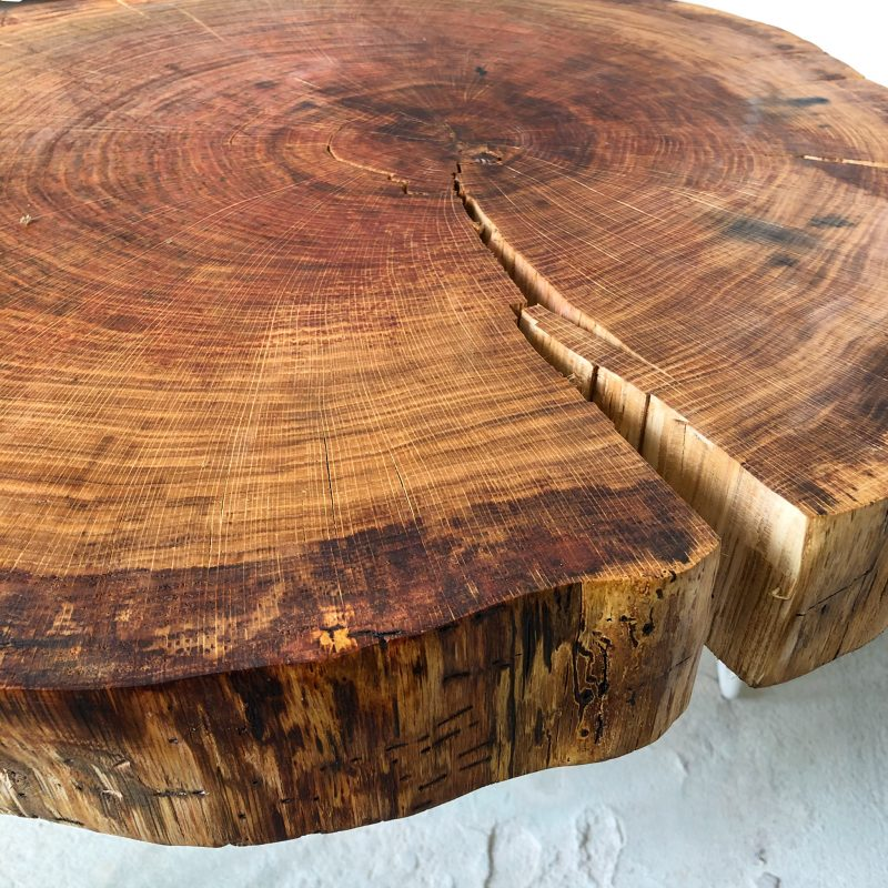 Baumscheibe Eichenholz